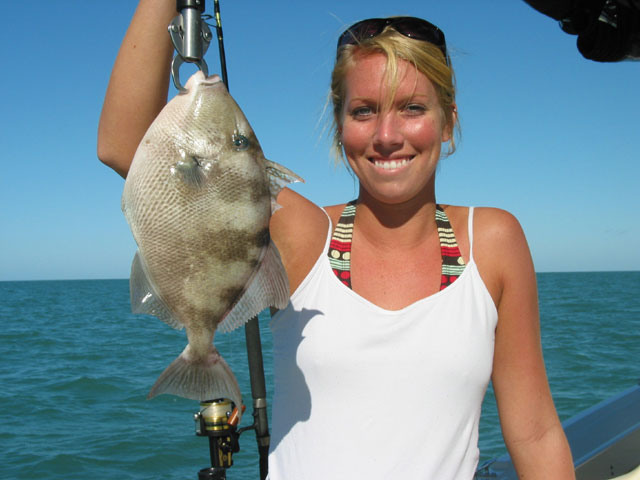 Fishing charter rates fort myers florida sport fishing for Ft myers fishing